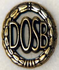 DSA_bronze_Anstecker
